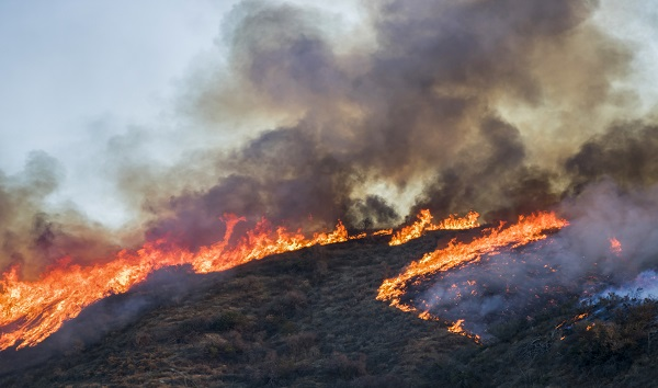How the California power outages reduce wildfire risk: What you need to know