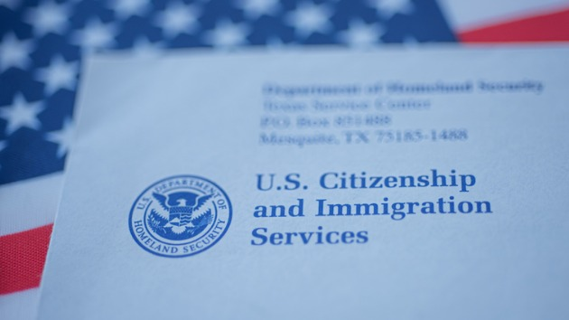 How activists are navigating the US immigration system